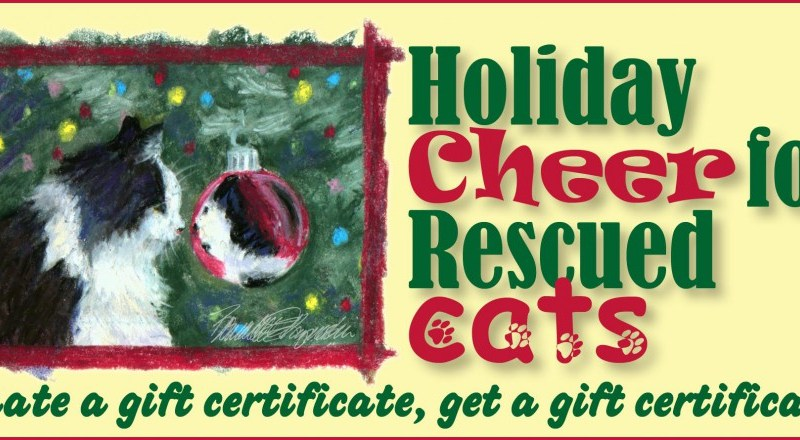 Holiday Cheer for Rescued Cats