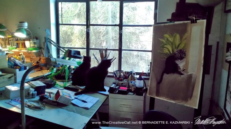 black cats looking out window