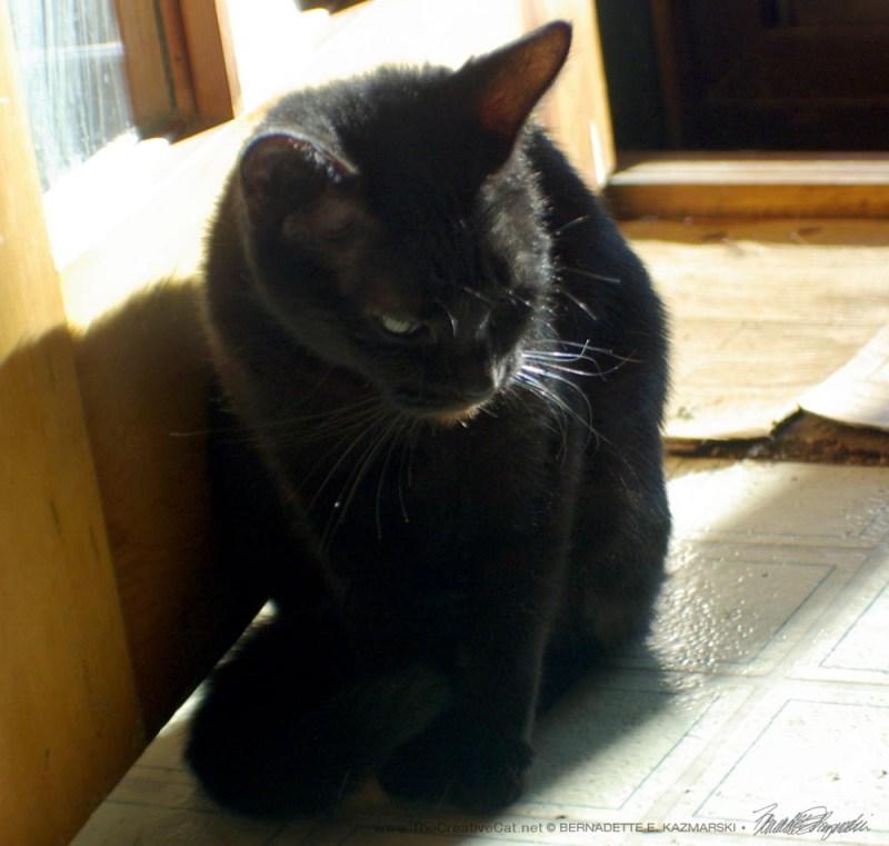Mimi by the door.