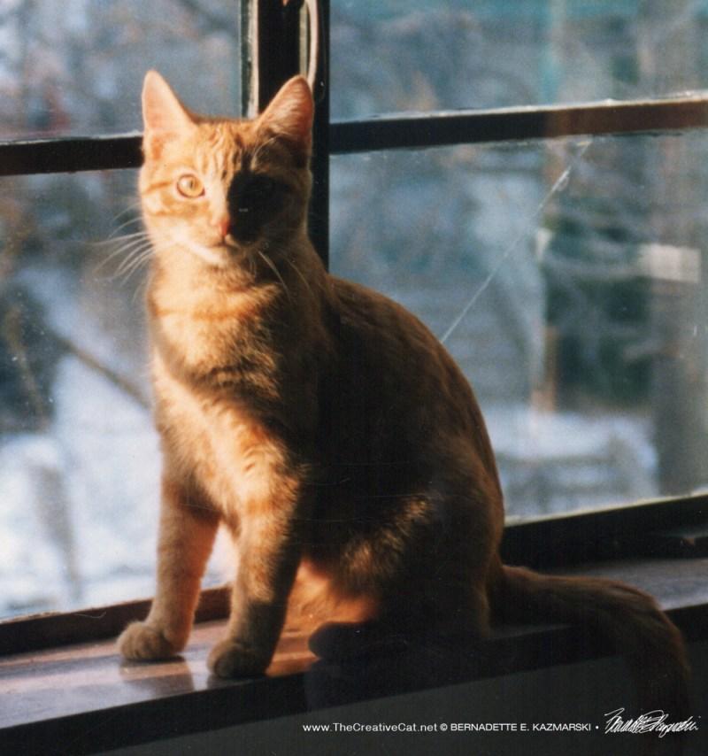 Sun-Ra sunbath.