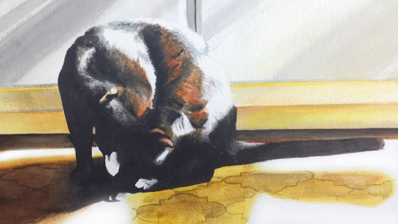 detail of watercolor of black cat