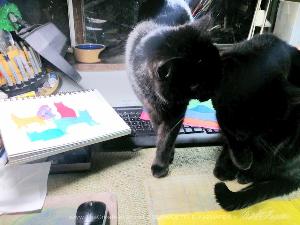 black cats on drafting table with artwork