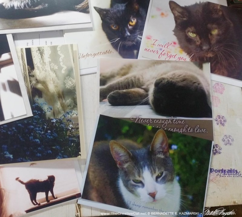 Some newer cards and ones adopted into the sympathy collection. new animal sympathy cards