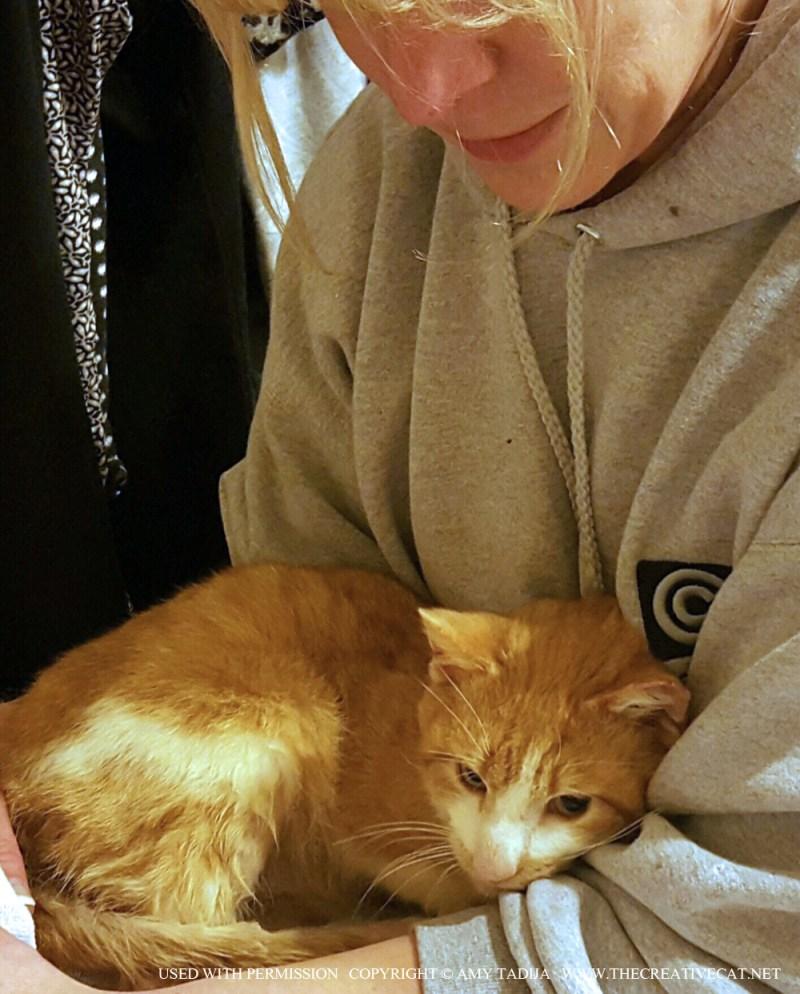 Toby on Amy's lap.