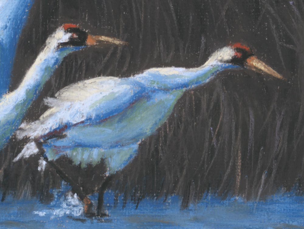 detail of whopping crane painting