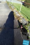 Mimi takes me for a walk.
