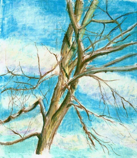 Winter Cherry Tree, pastel, 8 x 10, 2003 © Bernadette E. Kazmarski