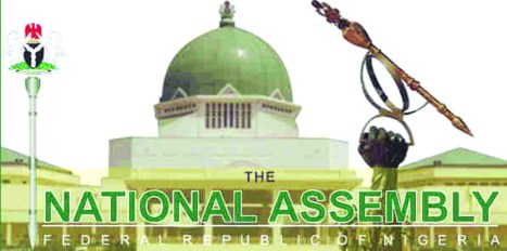 National Assembly (Photo-The Nation)