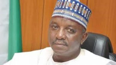 Minister of Power, Sale Mamman