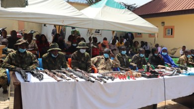 Kidnappers, weapons on parade
