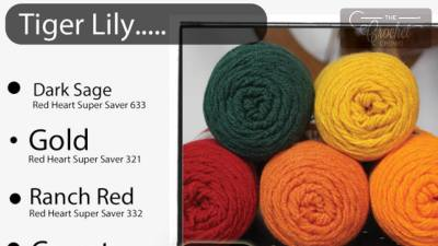 78 Color Combinations with Red Heart Super Saver