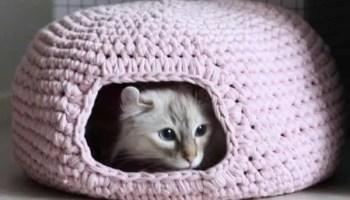Boho Flower Cat Coffee Cup Cozy Crochet Drink Sleeve Kitten Cup ... | 200x350