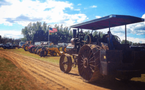 Threshing Bee Show