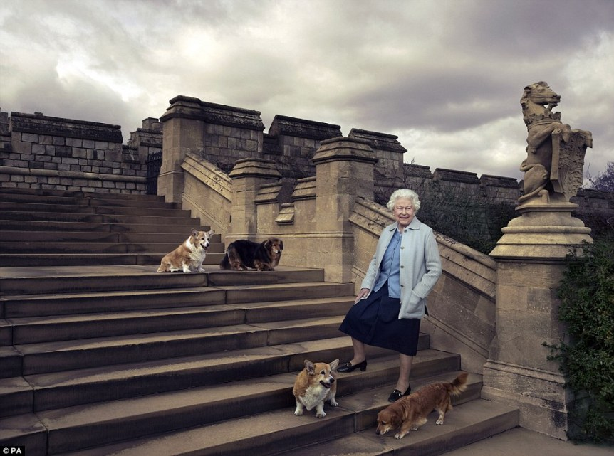 The corgis join The Queen in an official birthday photo (annie liebowitz)