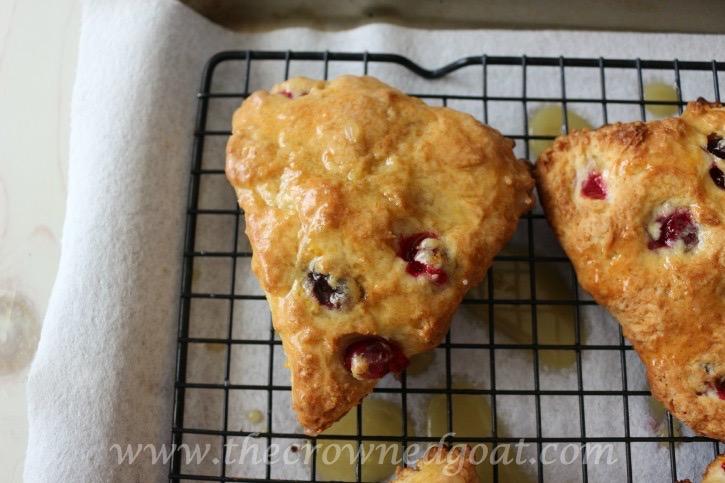 021215-19 Cranberry and Orange Scones with Orange Glaze Baking