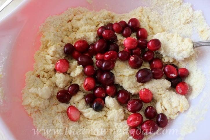 021215-9 Cranberry and Orange Scones with Orange Glaze Baking