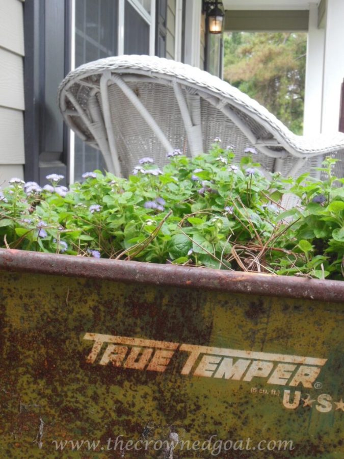 042815-8-wheelbarrow-container-gardens1-768x1024 Goodbye April, Hello May DIY
