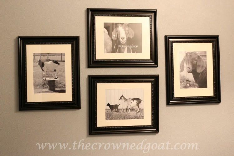 Tiffany-Kimmet-Photographs-The-Crowned-Goat-062315-13-Copy Other Changes Around the House Decorating