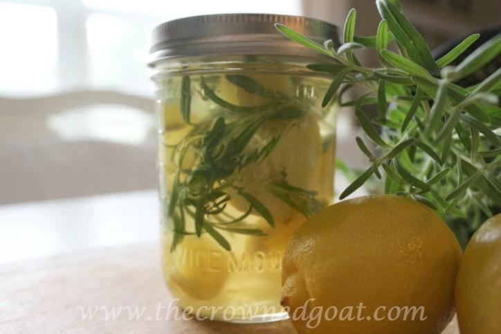 021916-11-10-Citrus-Inspired-Simmer-Pot-Recipes 10 Citrus Inspired Simmer Pot Recipes DIY