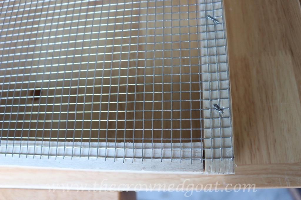 032816-8-1024x682 DIY Dutch Tulip Crate DIY Spring