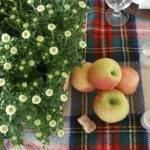 Decorating for Fall with Apples