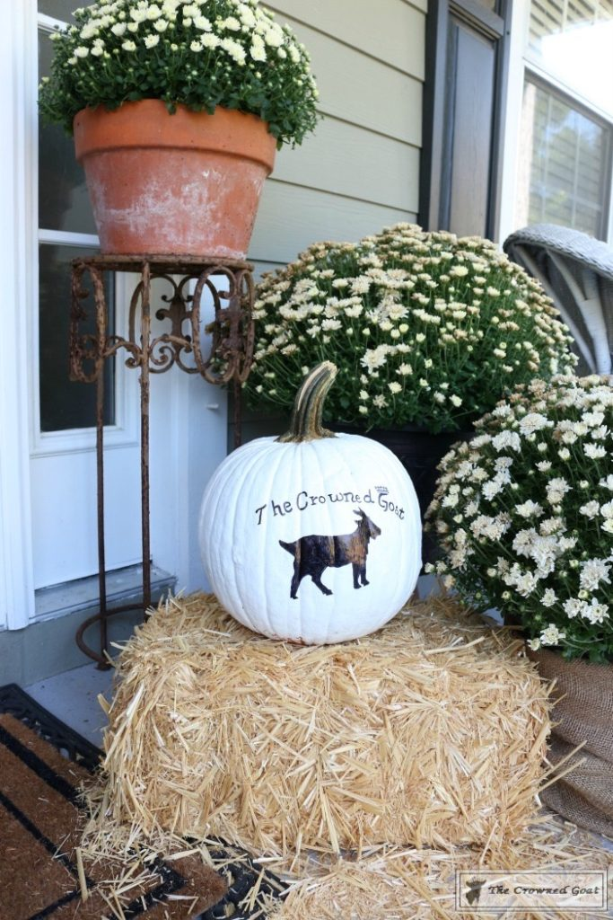 How-to-Customize-a-Painted-Pumpkin-4-1-683x1024 From the Front Porch From the Front Porch