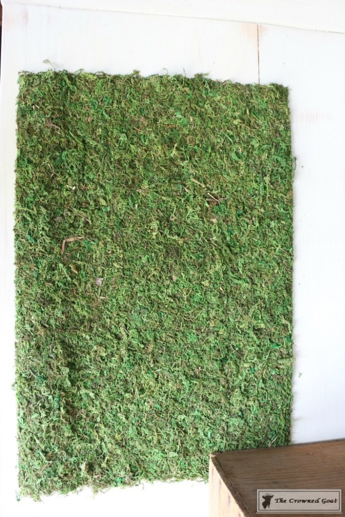 How to Make Moss Placemats-9