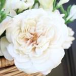 Spring Front Door Flower Basket
