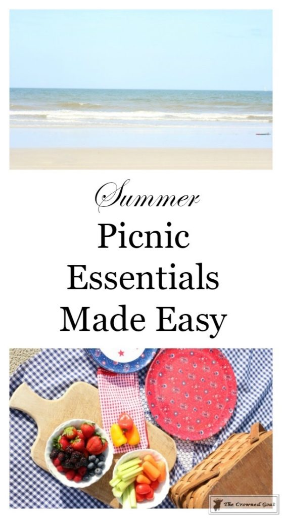 How-to-Create-a-Summer-Beach-Picnic-2-558x1024 Summer Picnic Essentials Decorating DIY Holidays