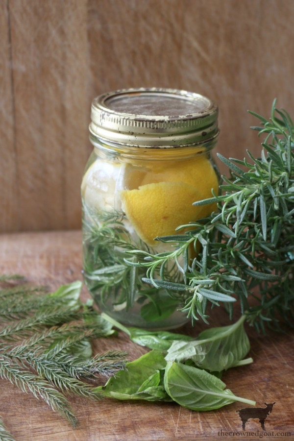 Citrus-Inspired-Simmer-Pot-Recipes-The-Crowned-Goat 8 Simple Winter Decorating Tips Decorating Holidays