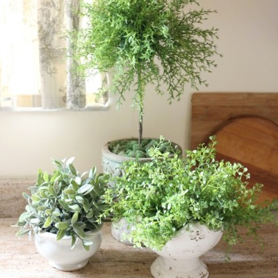 How to Make a Simple Herb Topiary