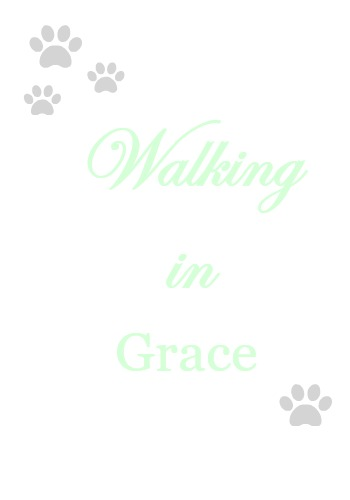 Walking-in-Grace-13 7 Strategies for Staying Motivated, a February Goals Update & a Video Celebrating Life Heart Stuff