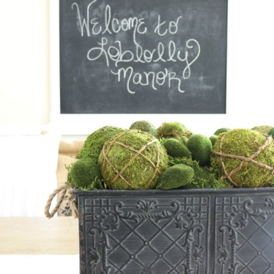 Creating a Simple Moss Centerpiece
