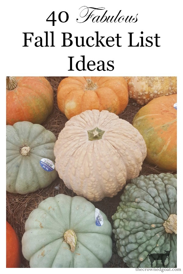40-Fall-Bucket-List-Ideas-The-Crowned-Goat-10 40 Fabulous Fall Bucket List Ideas Fall