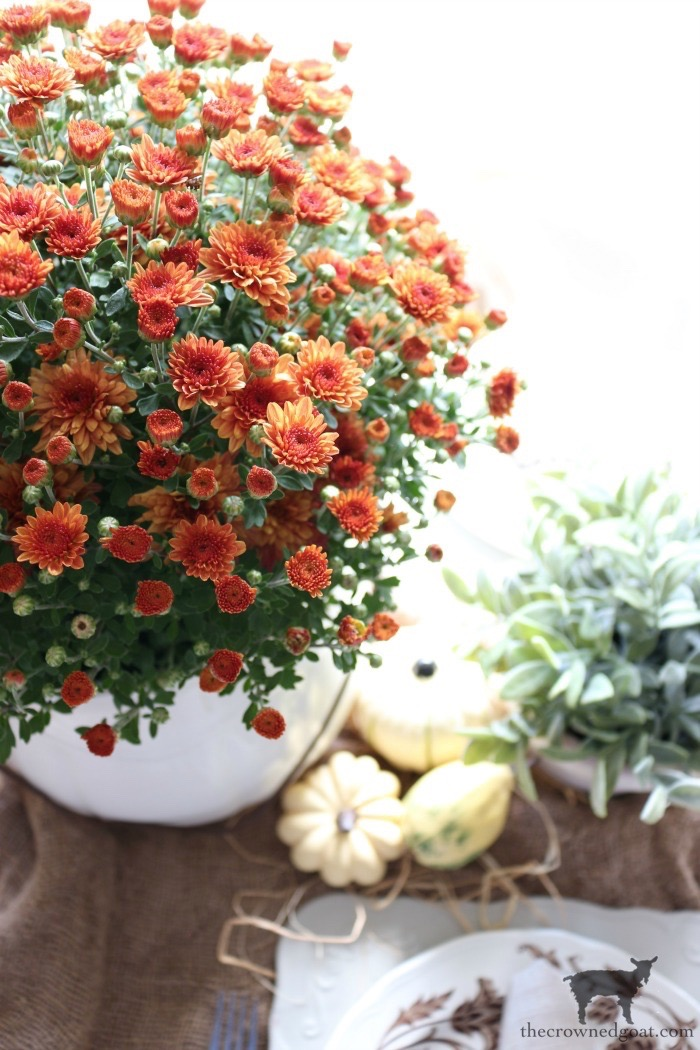 Festive-Fall-Tablescape-Tips-The-Crowned-Goat-12 5 Easy Tips for a Festive Fall Tablescape Decorating Fall