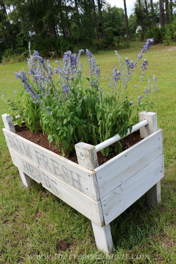 ASCP Painted Herb Garden Bed: One Year Later