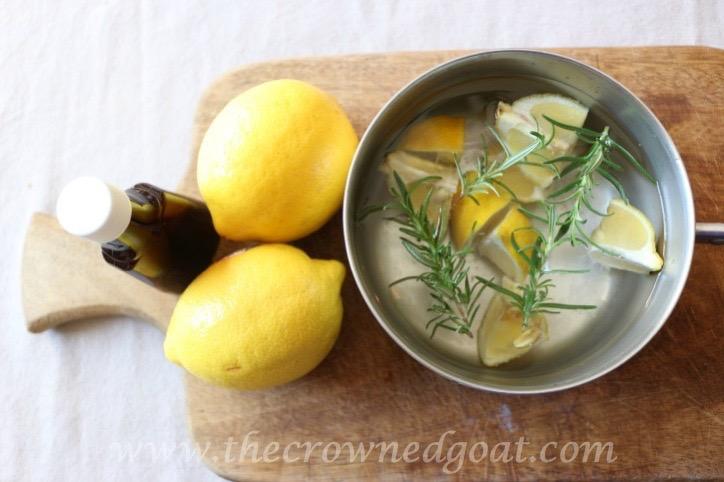 021916-2-10 Citrus Inspired Simmer Pot Recipes
