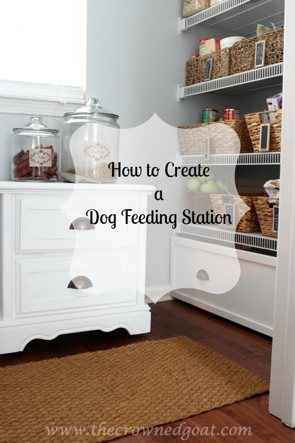 How to Create a Dog Feeding Station Pinnable