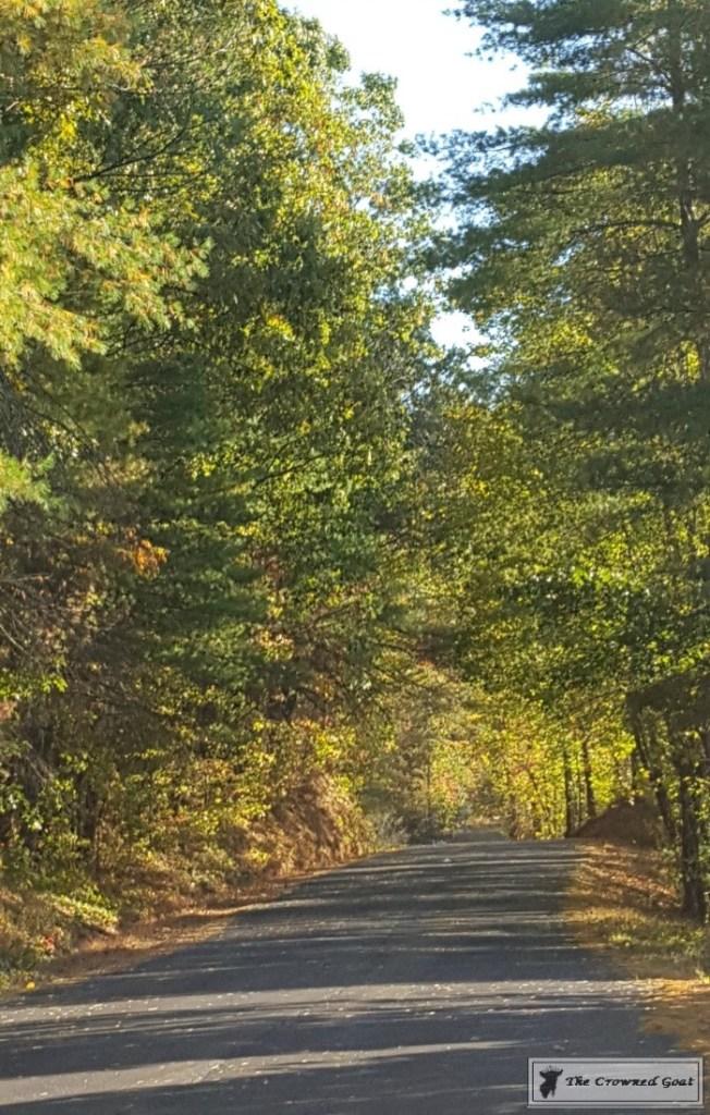 fall-in-blue-ridge-2