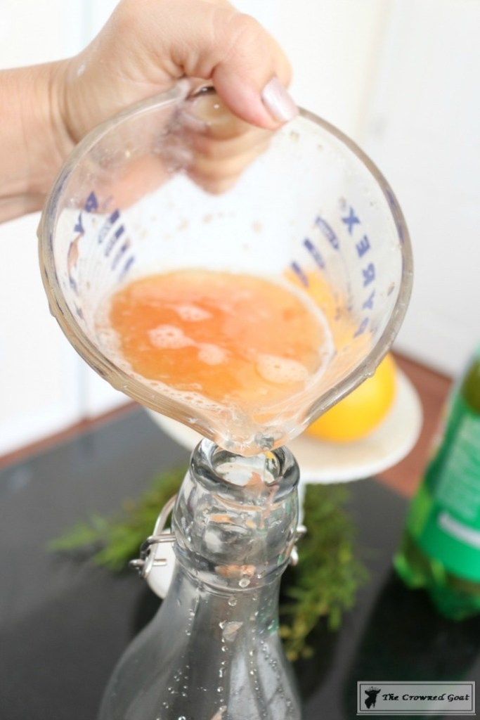 santas-florida-kiss-cocktail-5