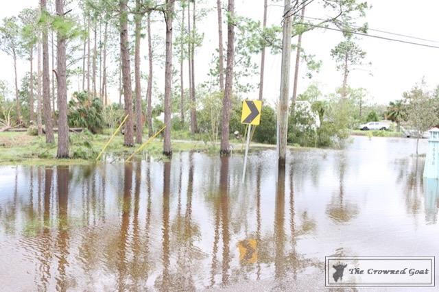 Thoughts on Hurricane Irma-12