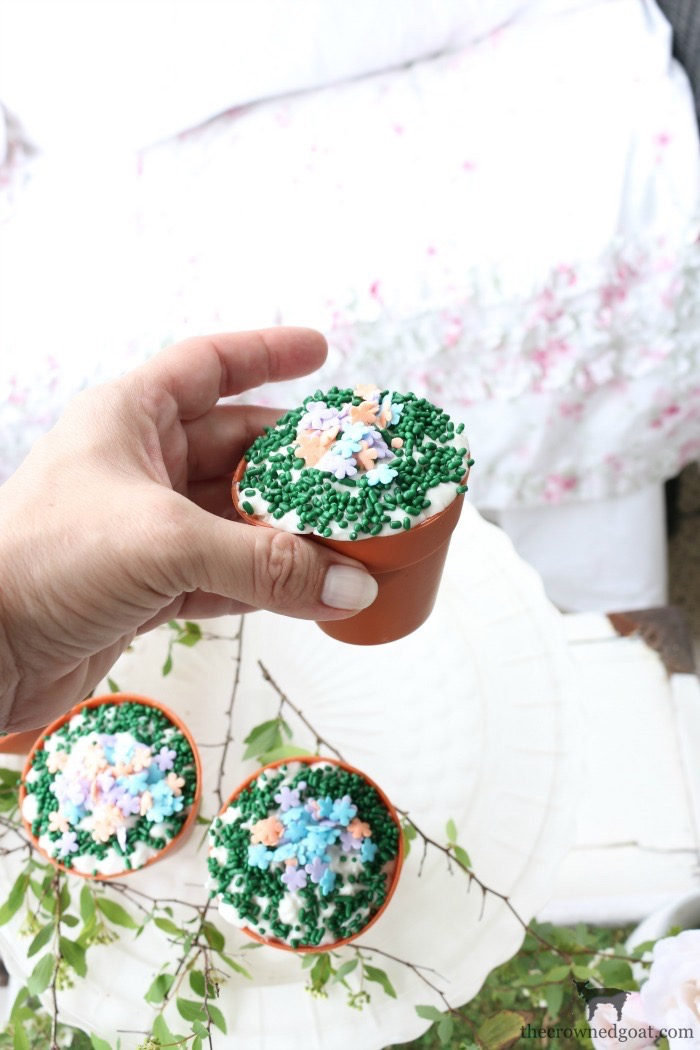 Spring Inspired Flower Pot Cupcakes