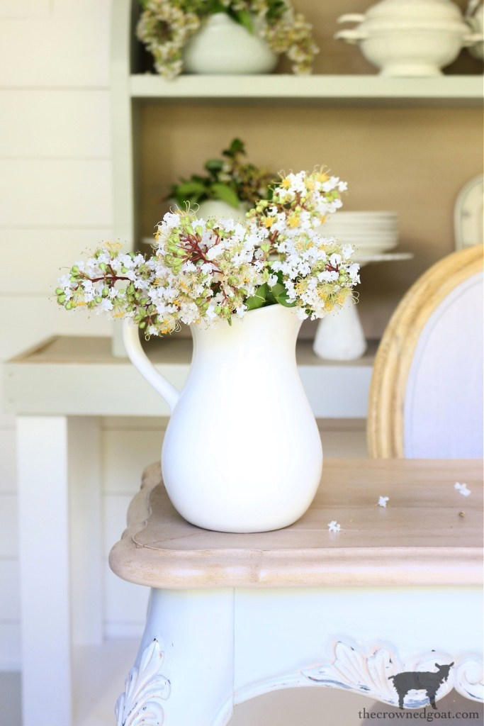 Crepe Myrtles in Ironstone Pitcher-The Crowned Goat