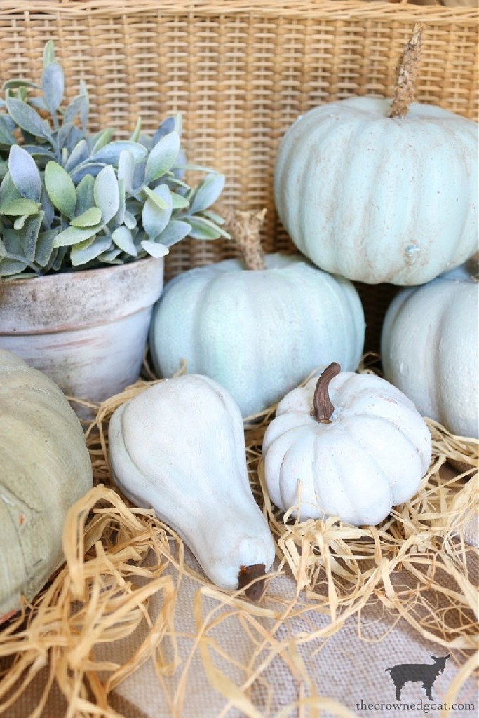 Early Fall Craft and Decorating Ideas-DIY Heirloom Pumpkins-The Crowned Goat