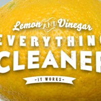 Lemon & Vinegar Everything Cleaner