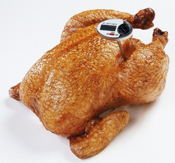 thermometer probe in whole chicken