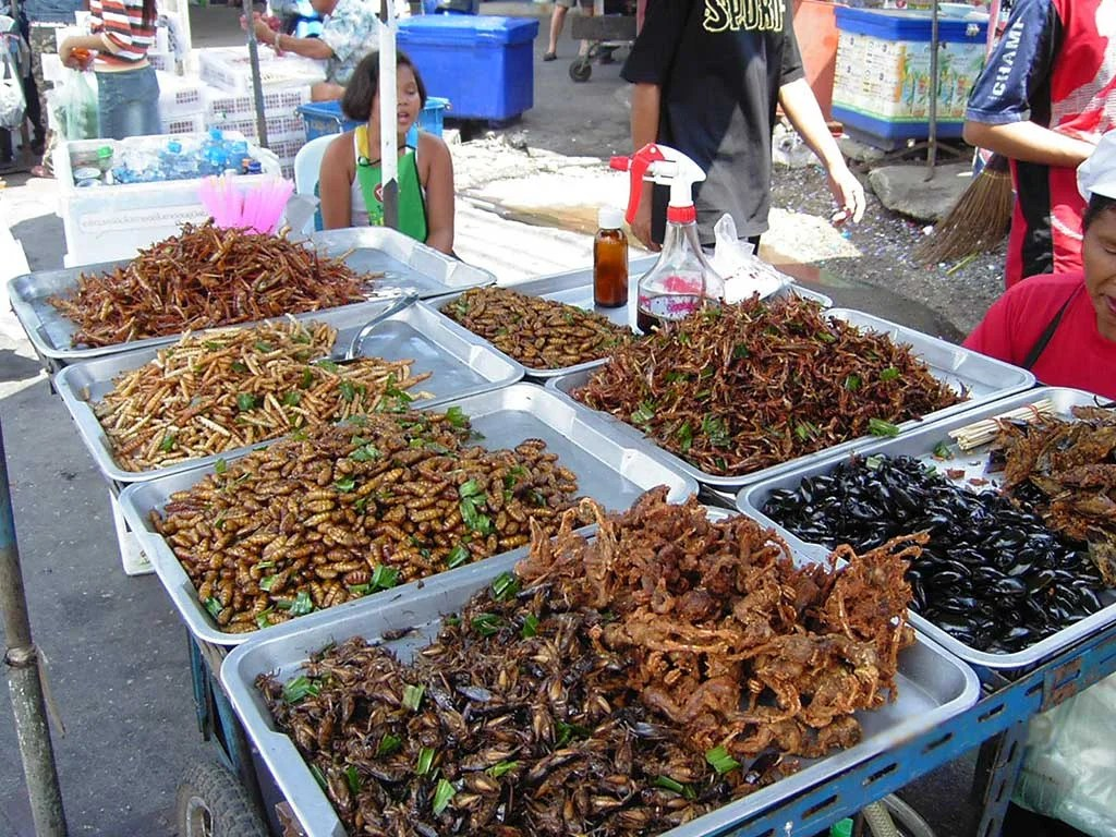 Insect Food Stall, Bangkok |TheCulinaryTravelGuide.com