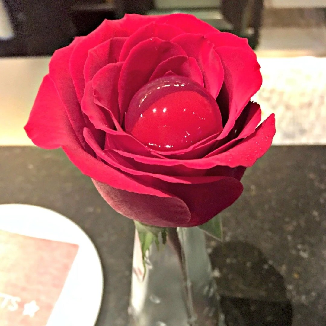 The Rose at Tickets Barcelona
