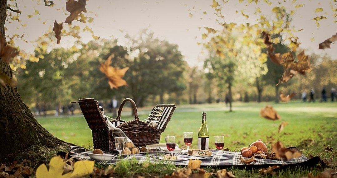 UK Food Experiences - Picnic in The Park with Private Butler at DUKES London