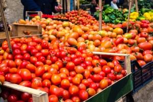 tomateos